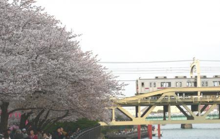 Kuritsu Sumida Park Image