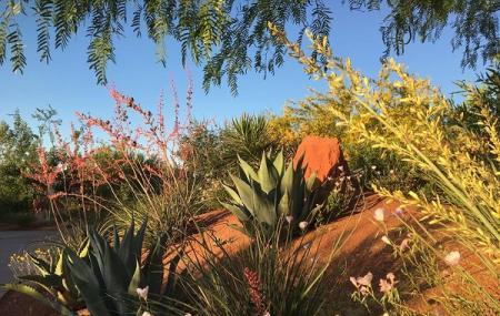 Red Hills Desert Garden Image