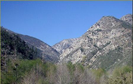 Mt. Baldy Wilderness Preserve Image