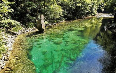 Vintgar Gorge Image