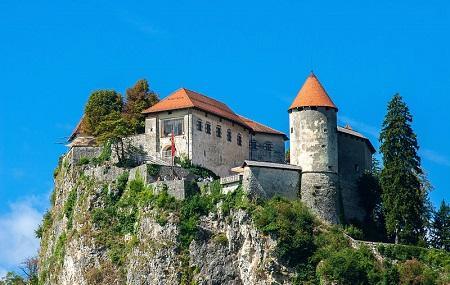 Bled Castle Image