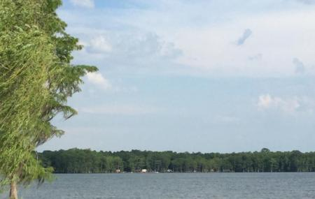 Lake Jackson Image
