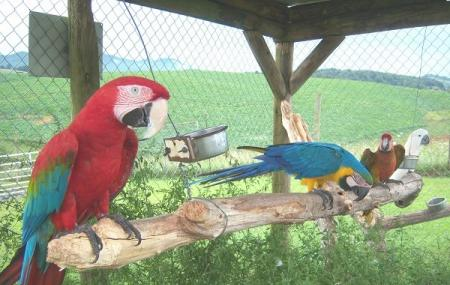 Fort Chiswell Animal Park Image
