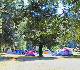 Colusa-sacramento River State Recreation Area Image