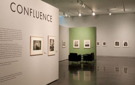 Lsu Museum Of Art Image
