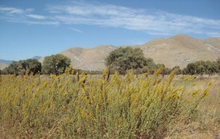 South Fork Wildlife Area Image