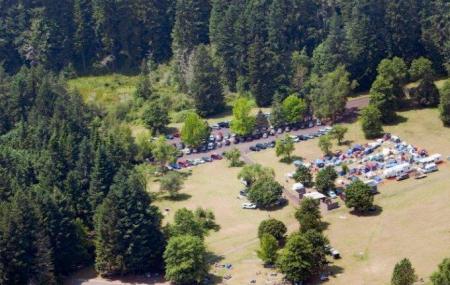 Lewis Creek Park Image