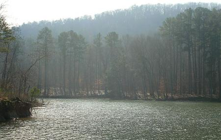 Lake Guntersville State Park Image