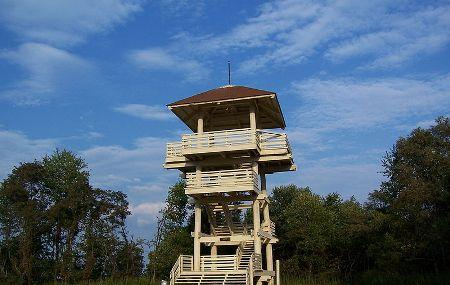 Pipestem State Park Lookout Tower Image
