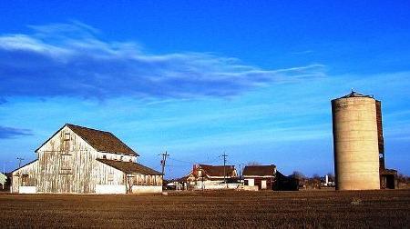 Bromley Hishinuma Farm Image