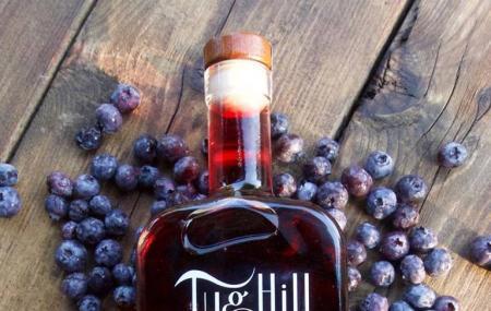 Tug Hill Vineyards Image