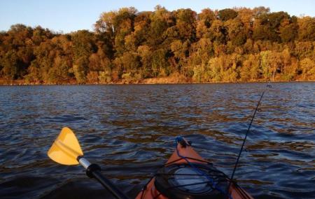 Conowingo Creek Image