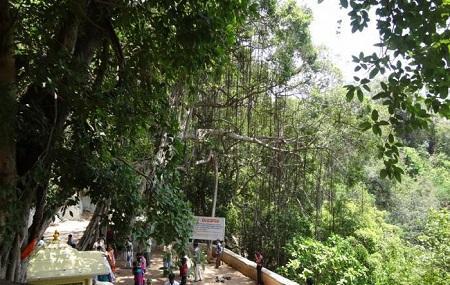 Phaladhara Panchadhara Image