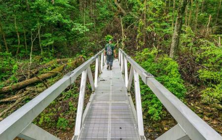 Cumberland Trail Image