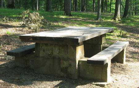 Picnic Area - Jackson State Forest Image