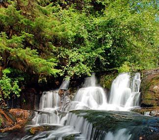 Alsea Falls Image