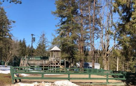Camp Emerald Acres Image