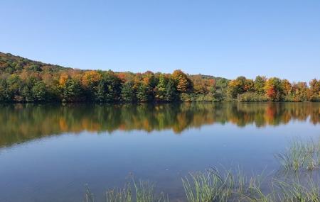 Case Lake Image