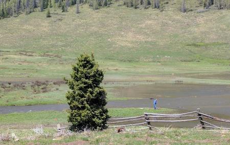 Trujillo Meadows Campground Colorado Image