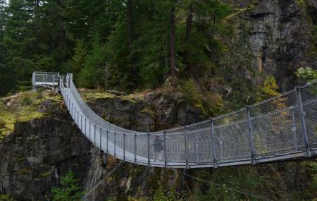 Elk Falls Suspension Bridge Image