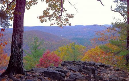 Pine Knob Loop Trail Image