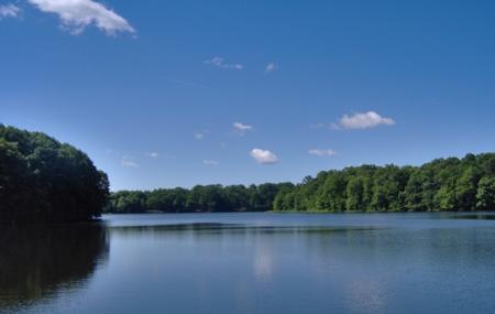 Farrington Lake Image