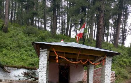 Bhavishya Badri Image