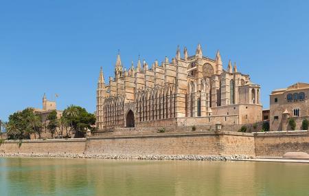 Palma Cathedral Image
