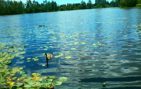 Mill Lake Park Image