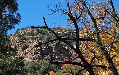 The Nature Conservancy Ramsey Canyon Image