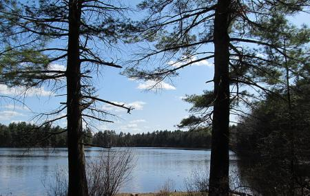 Assabet River National Wildlife Refuge Image