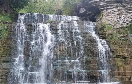 Jones Falls Image