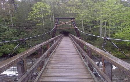 Toccoa River Swinging Bridge Image