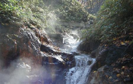 Oyunuma Natural Footbath Image