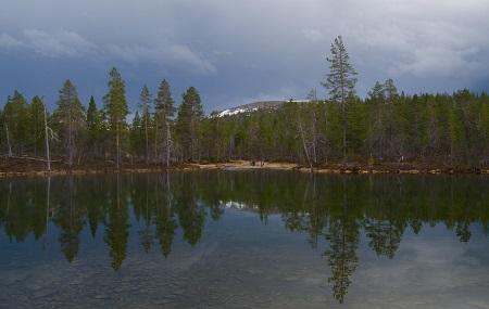 Urho Kekkonen National Park Image
