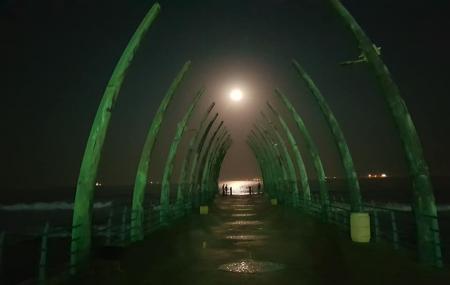 Whalebone Pier Image