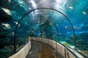 Barcelona Aquarium, Barcelona