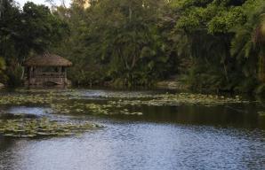 Hugh Taylor Birch State Park Recreation Area, Fort Lauderdale