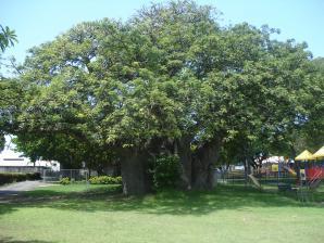 Queen Park, Bridgetown