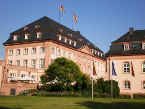 Rhineland Museum Or Rheinisches Landesmuseum, Trier
