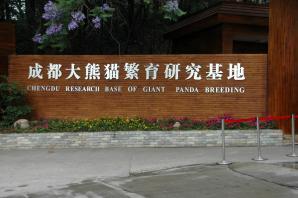 Giant Panda Breeding Research Base, Chengdu
