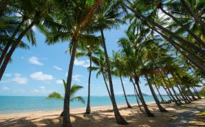 Palm Cove, Queensland, Cairns