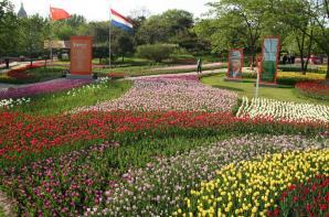 International Horticultural Expo Garden, Shenyang