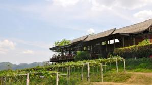 Hua Hin Hills Vineyard, Hua Hin