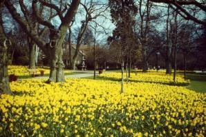 Hazlehead Park , Aberdeen