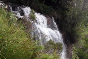 Goomoolahra Falls, Springbrook