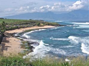 Hookipa Beach Park, Maui