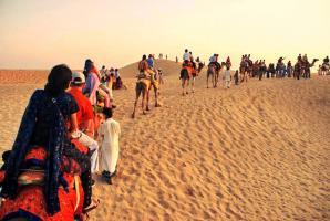 Pushkar Camel Safari Tour, Pushkar