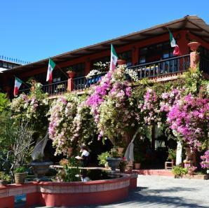 Vallarta Botanical Gardens, Puerto Vallarta