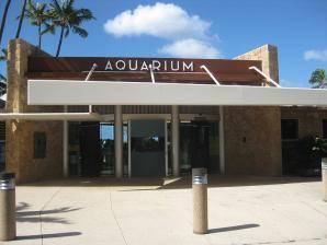 Waikiki Aquarium, Honolulu